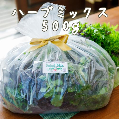 herb500